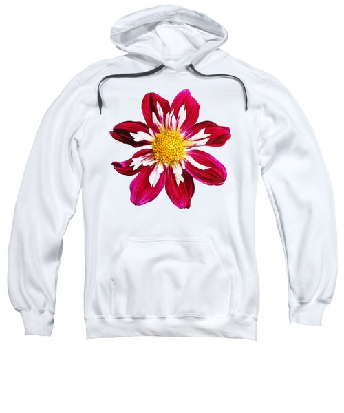 Ruby Glow Sweatshirt