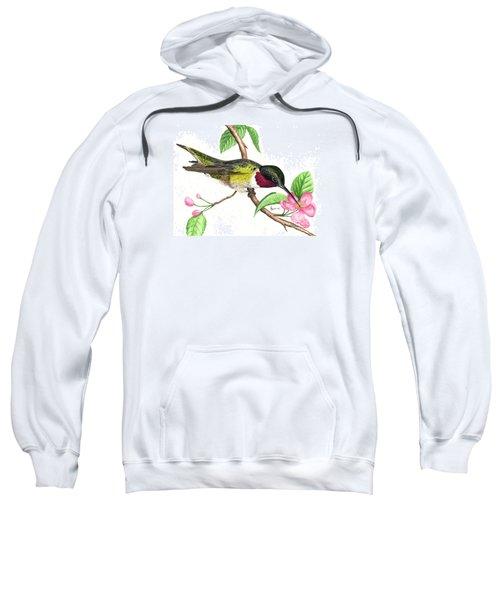 Ruby-throated Hummingbird Sweatshirt