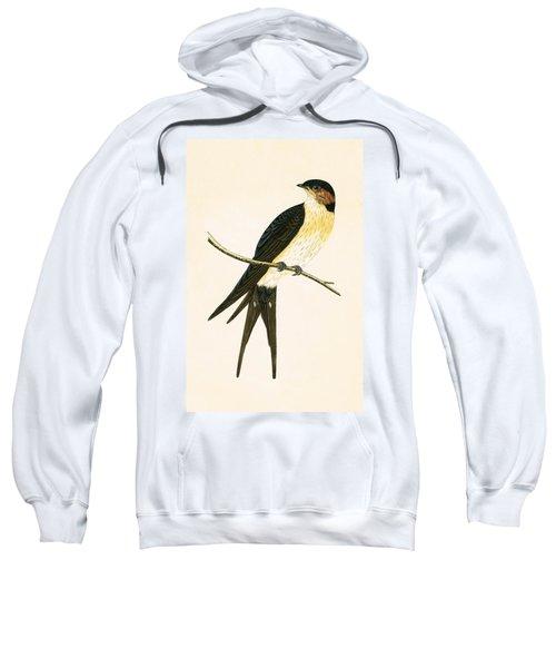 Rufous Swallow Sweatshirt by English School