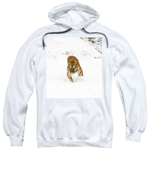 Running Tiger Sweatshirt