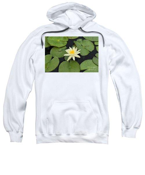 Sacred Lotus Sweatshirt