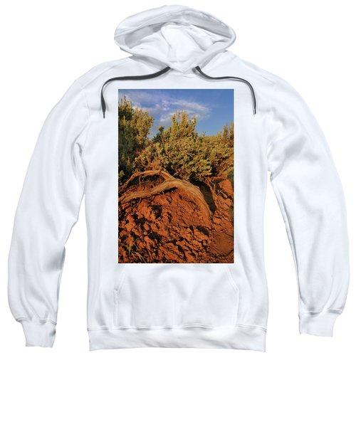 Sagebrush At Sunset Sweatshirt