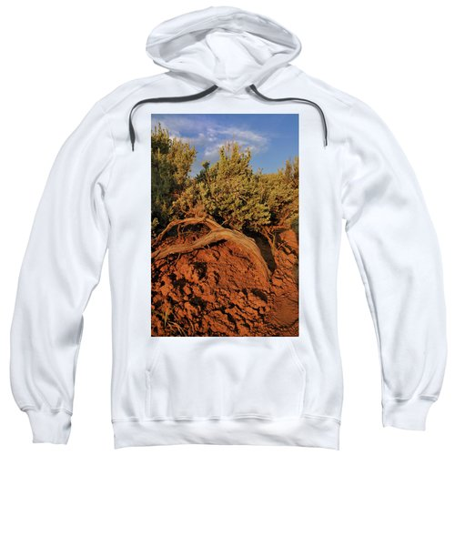 Sagebrush At Sunset Sweatshirt