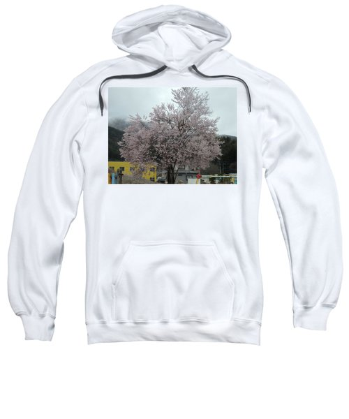 Sakura, Japan's Ephemeral Also Beautiful Flowers Sweatshirt