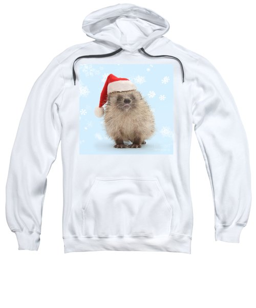 Santa's Prickly Pal Sweatshirt