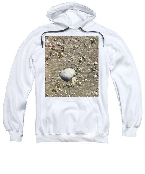 Sarasota County Shells Sweatshirt