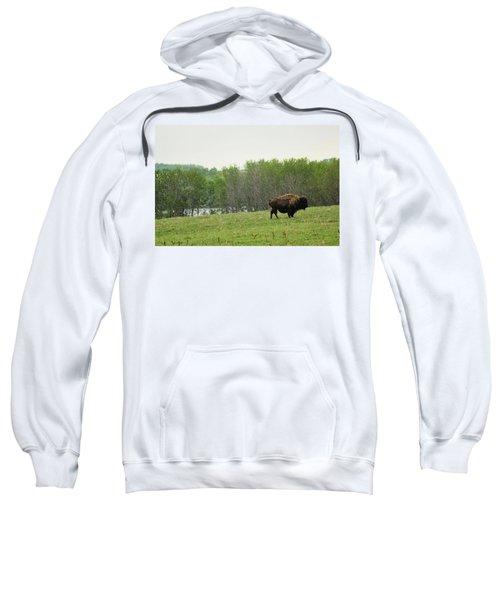 Saskatchewan Buffalo Sweatshirt