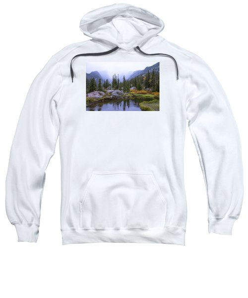 Saturated Forest Sweatshirt