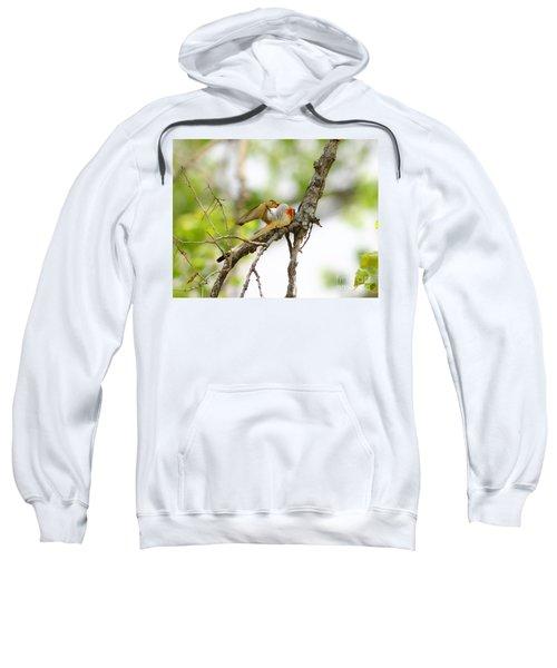 Scissortail Ballet Sweatshirt