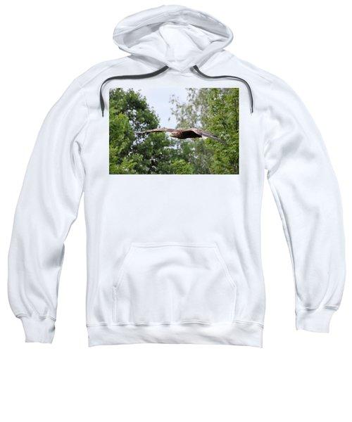 Sea Eagle Sweatshirt
