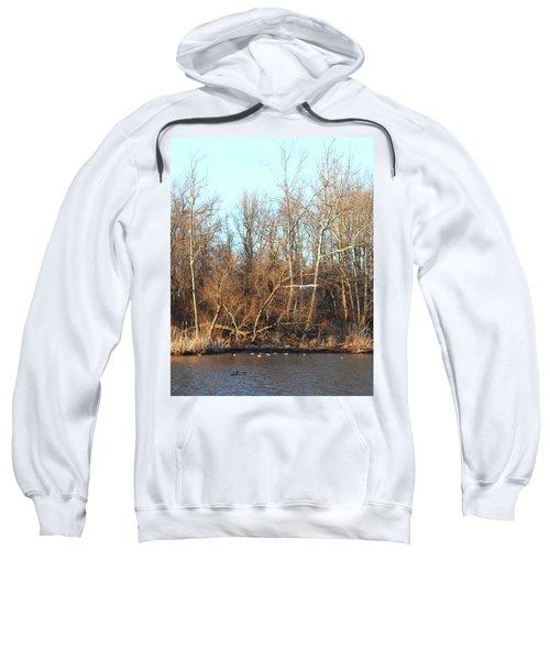 Seagull Flying Sweatshirt