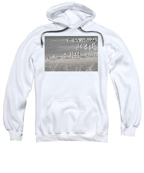 Seascape Gulf Coast, Ms F10s Sweatshirt