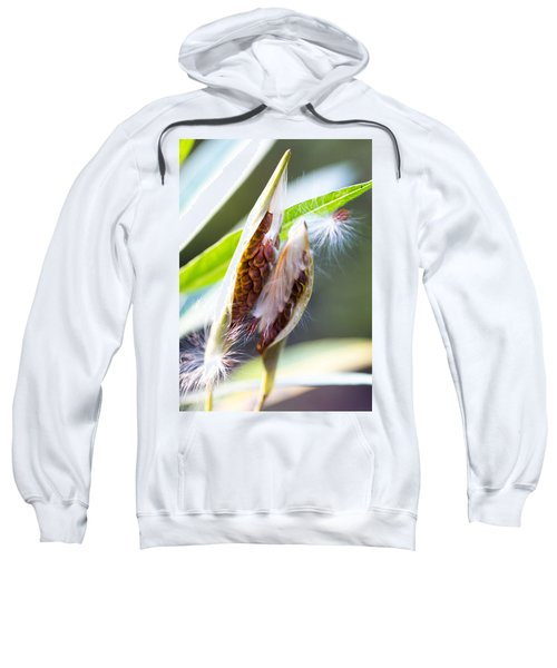 Seeds Sweatshirt
