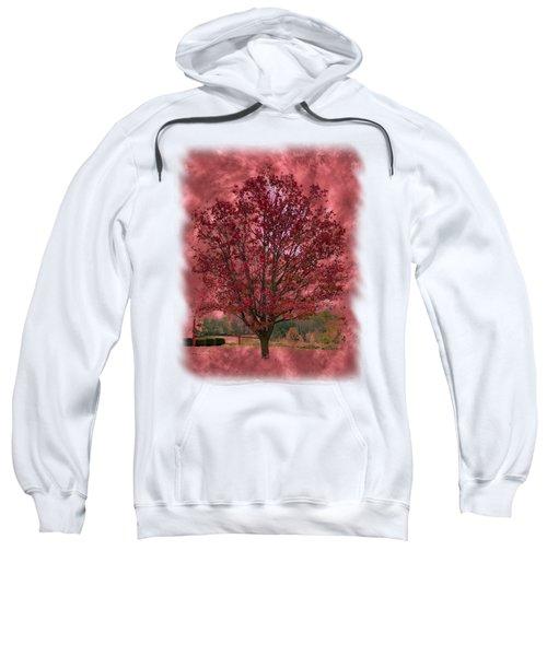 Seeing Red 2 Sweatshirt