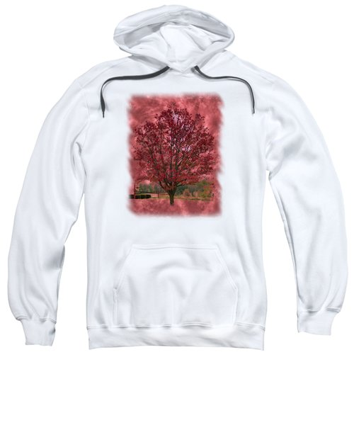 Seeing Red 2 Sweatshirt