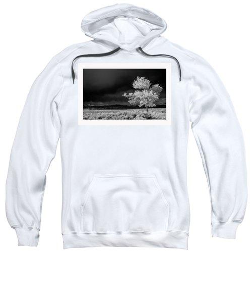 Selective Sweatshirt