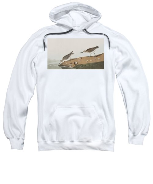 Semipalmated Sandpiper Sweatshirt