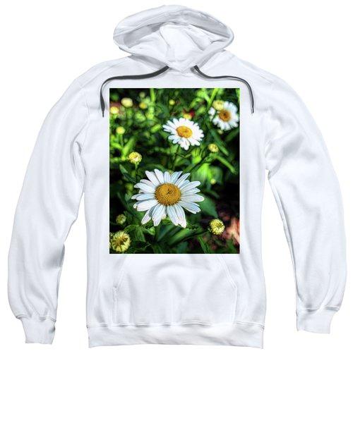 Shasta Daisy Sweatshirt