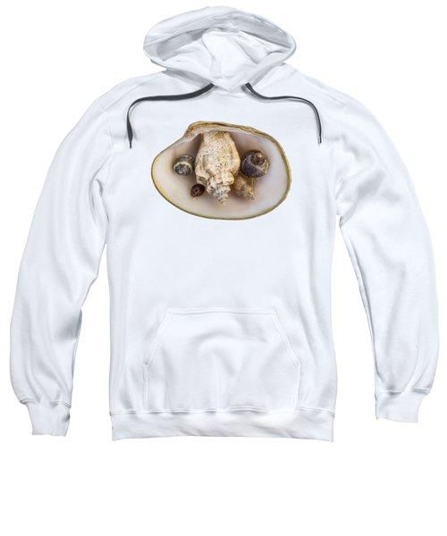 Shells Within A Sea Shell Sweatshirt