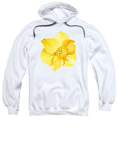 Short Trumpet Daffodil In Yellow Sweatshirt
