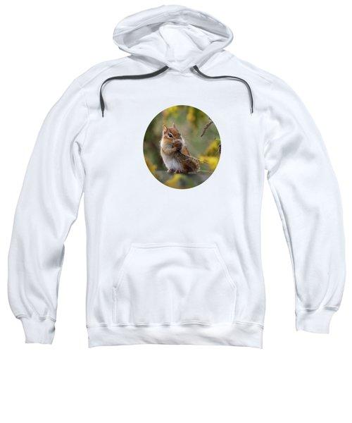 Shy Little Chipmunk Sweatshirt