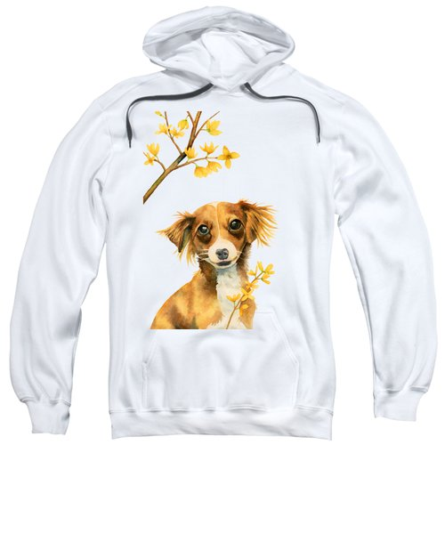Signs Of Spring - Cute Dog With Forsythia Watercolor Painting Sweatshirt