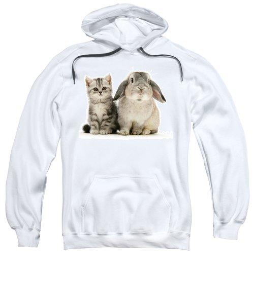 Silver Tabby And Rabby Sweatshirt
