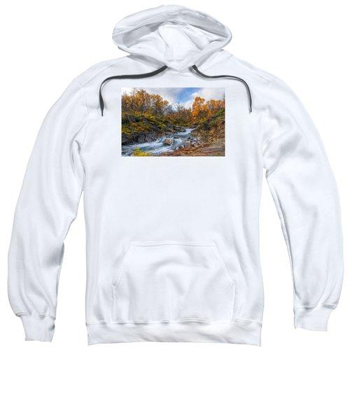 Silverfallet Sweatshirt