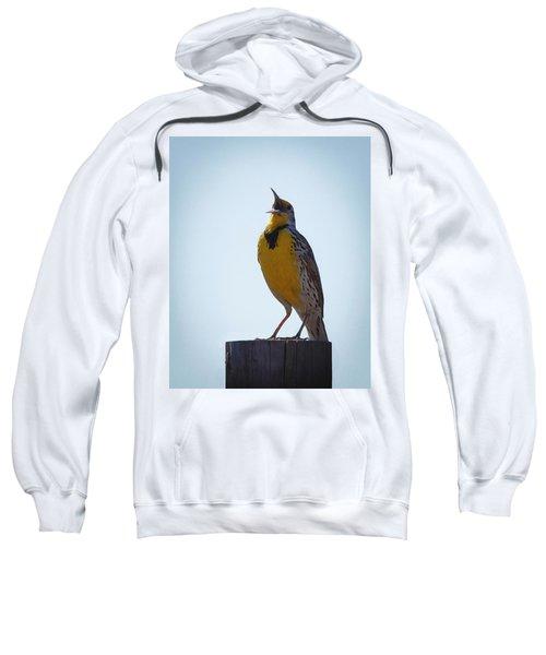 Sing Me A Song Sweatshirt by Ernie Echols