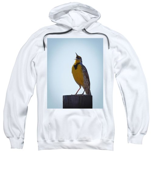 Sing Me A Song Sweatshirt