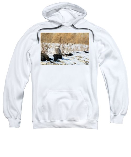 Sitting Snowy Sweatshirt