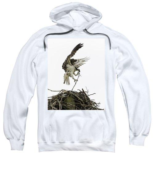 Sky Ballet Sweatshirt