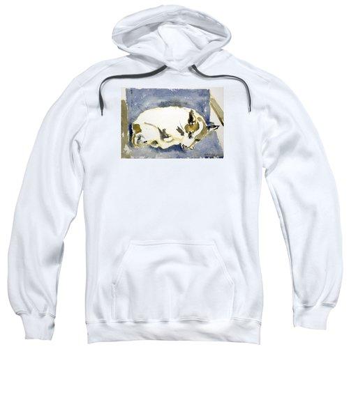 Sleeping Dog Sweatshirt