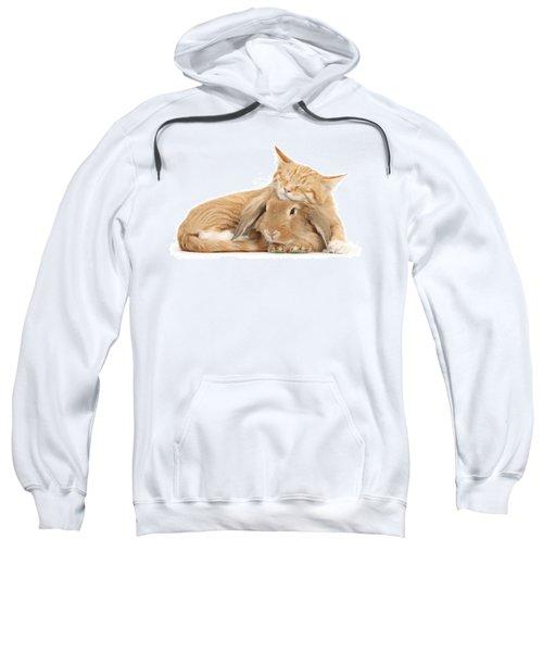 Sleeping On Bun Sweatshirt