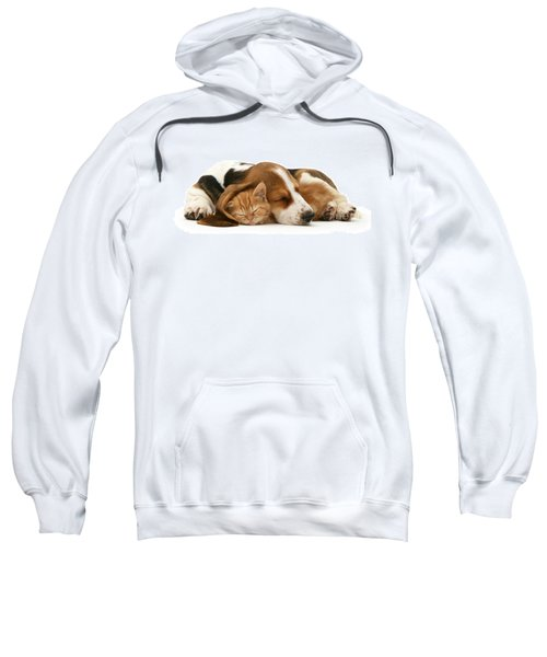 Sleepy Ginger Pals Sweatshirt