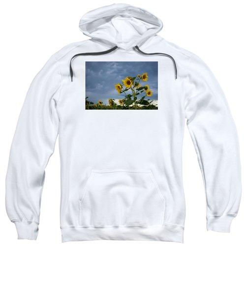 Small Sunflowers Sweatshirt