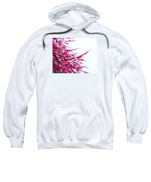Snow Blossoms Sweatshirt