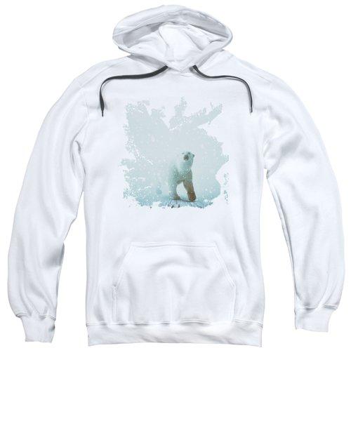 Snow Patrol Sweatshirt by Katherine Smit