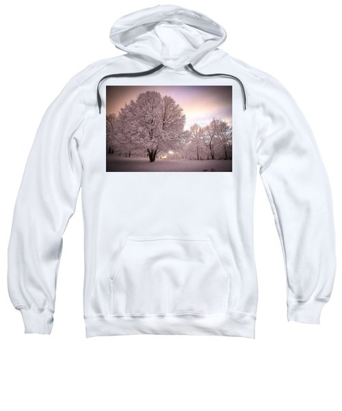 Snow Tree At Dusk Sweatshirt