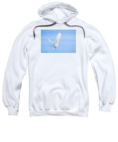 Snowy Owls Soaring Sweatshirt