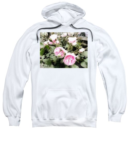 Soft Pink Bliss Sweatshirt