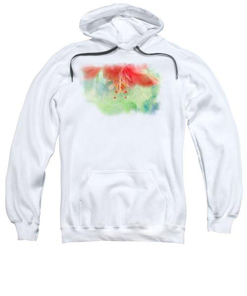 Softly Colored 1 Sweatshirt by Judy Hall-Folde