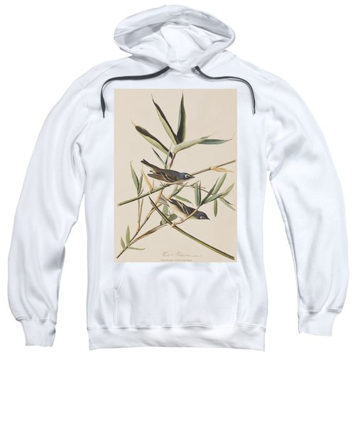 Solitary Flycatcher Or Vireo Sweatshirt by John James Audubon