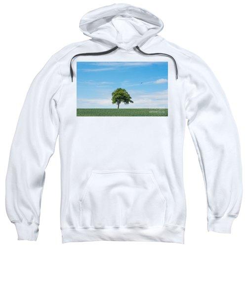 Solo Tree Sweatshirt