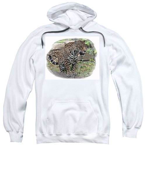 South American Jaguar Sweatshirt