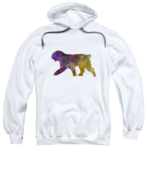 Spanish Water Dog In Watercolor Sweatshirt