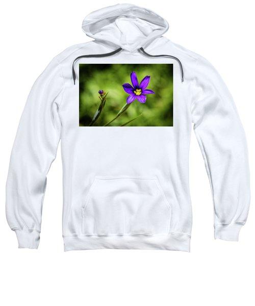 Spring Blooms Sweatshirt