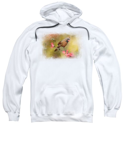 Spring Cardinal 1 Sweatshirt by Jai Johnson