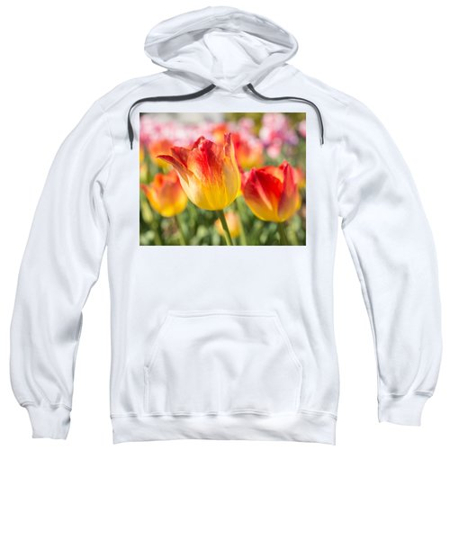 Spring Touches My Soul Sweatshirt