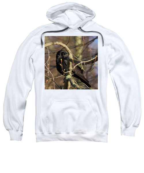 Sweatshirt featuring the photograph Springtime Crow Square by Bill Wakeley